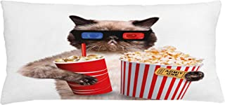 Ambesonne Movie Theater Throw Pillow Cushion Cover, Cat with Popcorn and Drink Watching Movie Glasses Entertainment Cinema Fun, Decorative Rectangle Accent Pillow Case, 36