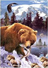 DIY 5D Diamond Painting Kits for Adults Full Drill Embroidery Paintings Rhinestone Pasted DIY Painting Cross Stitch Arts Crafts for Home Wall Decor 30x40cm/11.8×15.7Inches (Bear and Fish)