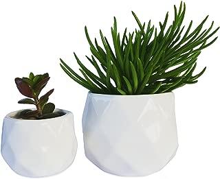 White Modern Small Pots, Mini Succulent Planters, Desk Plant Flower Pots, Set of 2 Geometric Pots
