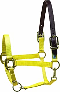 Best yellow horse halters Reviews