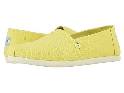 TOMS Alpargata (Yellow Cream) Men