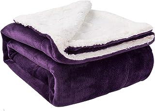 Biddeford Microplush Sherpa Heated Blanket