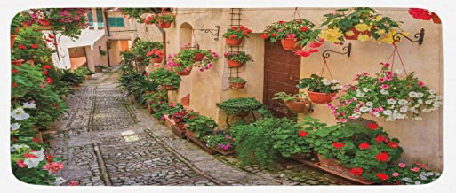 Lunarable Tuscan Kitchen Mat, Entrance to Mediterranean Tuscan House Rustic Wooden Door and Colorful Flowers Image, Plush Decorative Kithcen Mat with Non Slip Backing, 47