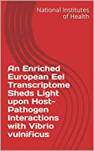 An Enriched European Eel Transcriptome Sheds Light upon Host-Pathogen Interactions with Vibrio vulnificus