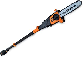 WEN 40421 40V Max Lithium Ion Cordless Pole Saw, 10