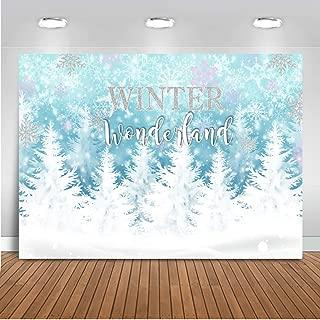 Mocsicka Winter Wonderland Backdrop Blue Snowflake Winter Onerderland Background 7x5ft Vinyl Winter Wonderland Snow Party Banner Backdrops