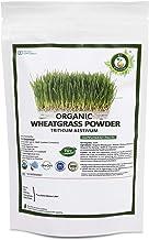 R V Essential Organic Wheatgrass Powder 100gm/ 3.53oz/ 0.22lb- Triticum Aestivum Wheat grass Powder USDA Organic Certified Ayurvedic Herbal Supplement in Resealable and Reusable Zip Lock Pouch