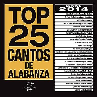 Top 25 Cantos De Alabanza (Edición 2014)