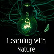 Learning with Nature – Study Music with Nature Sounds, Learn By Hearth, Increase Memory, Better Memory, Focus on Task, Nature Sounds for Learning, Relaxation