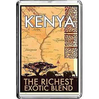 B162 KENYA AIMANT POUR LE FRIGO KENYA VINTAGE TRAVEL PHOTO REFRIGERATOR MAGNET