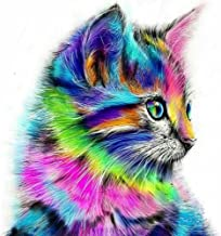 DIY 5D Diamond Painting by Number Kits, Full Drill Cute Cat Embroidery Cross Stitch Arts Craft Canvas Wall Decor 12 x 12inch