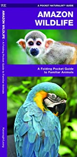 Amazon Wildlife: A Folding Pocket Guide to Familiar Animals (Wildlife and Nature Identification)
