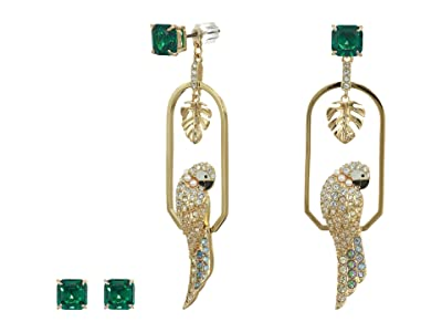 Swarovski Tropical Parrot Pierced Earrings (Light Multi) Earring