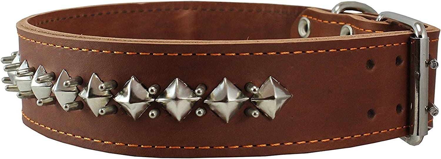2  Wide Thick Latigo Leather Spiked Studded Dog Collar Brown Sized to Fit 18 22  Neck. Retriever, Doberman, redtweiler, Pitbull