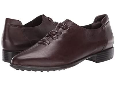 Spring Step Gwyneth (Chocolate Brown) Women