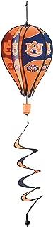 auburn hot air balloon