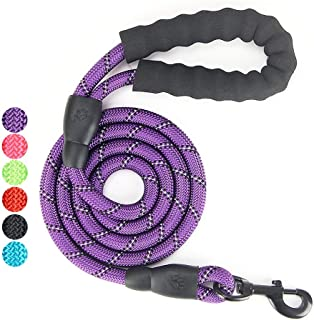 AINAAN 5 FT Strong Dog Leash with Comfortable Padded Handle and Highly Reflective Threads, 2019, Purple