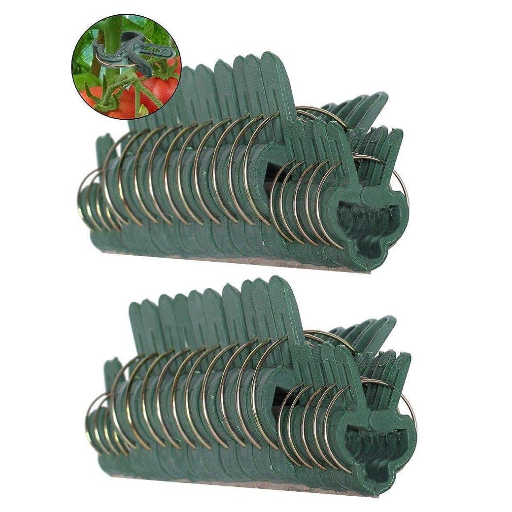 交じるダメージ債務Semoic 40ピース グリーン 穏やかな園芸植物&花レバーループグリッパークリップ、植物の茎、茎、およびつるを支持または矯正するためのツール