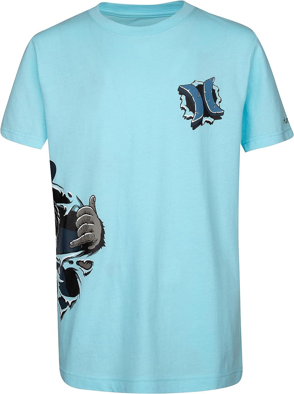 Hurley Boys' Character Graphic T-Shirt