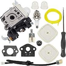 Hayskill RB-K106 Carburetor for Echo PB-250LN PB-250 ES-250 Handheld Leaf Blower A021003661 w Repower Kit Air Filter