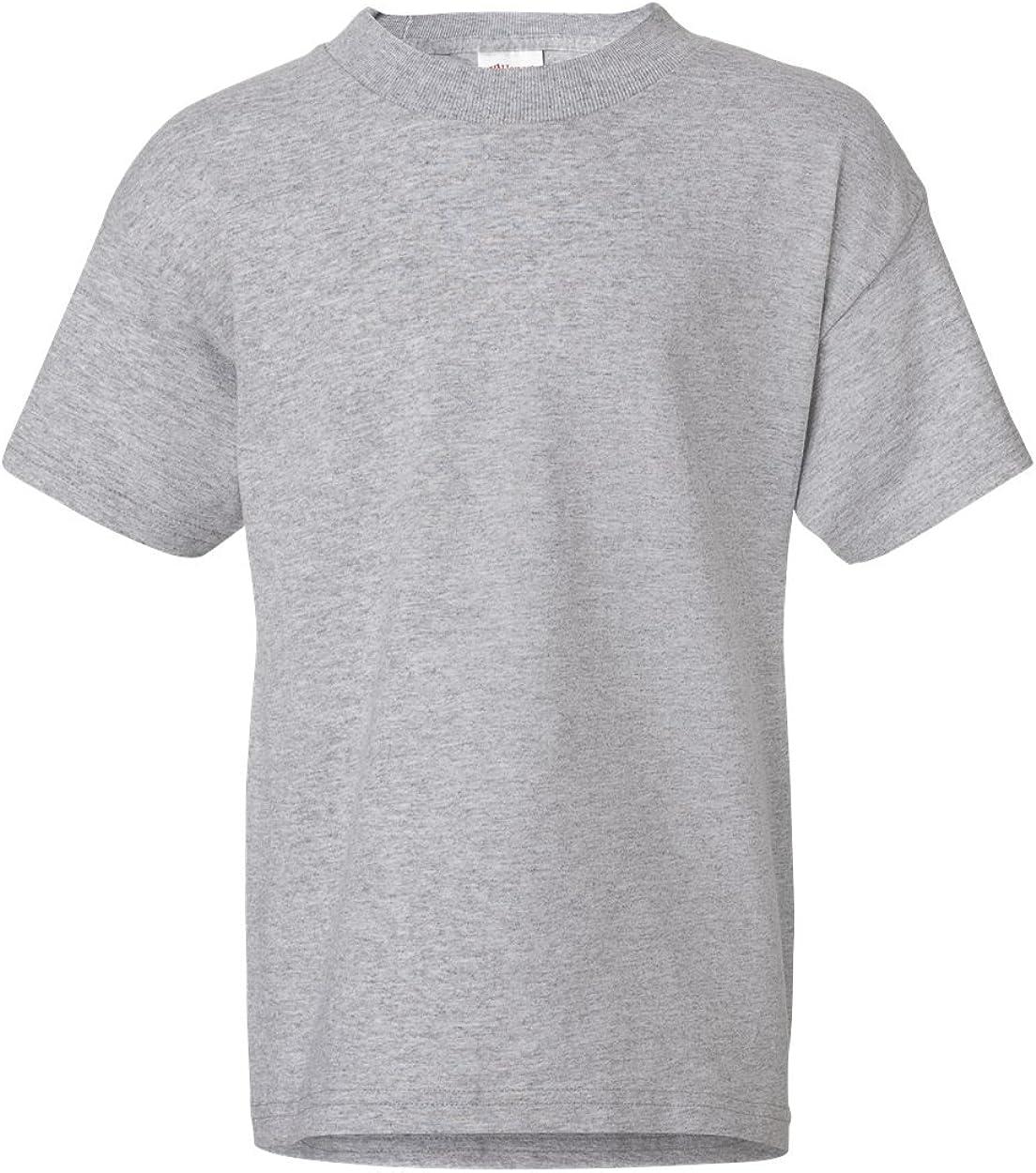 2-Pack Hanes ComfortSoft Youth Short Sleeve Tagless T-Shirt, Lt Steel, M (8)