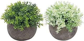 The Bloom Times 2 Pcs Fake Plant for Bathroom/Home Office Decor, Small Artificial Faux Greenery for House Decorations (Potted Plants) (Mixed Green)