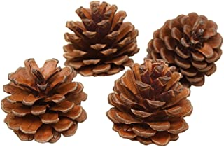 QHZHANG Christmas Bulk Package of Natural Pinecones for Home Party Decorations-25 Pack (1)