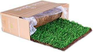 Best artificial grass patch for dogs Reviews