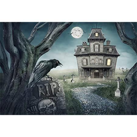 6x6FT Vinyl Photo Backdrops,Vintage Halloween,Tombstone Skulls Photoshoot Props Photo Background Studio Prop