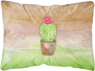Carolines Treasures Cactus Green and Brown Watercolor Floor Mat 19 H x 27 W Multicolor