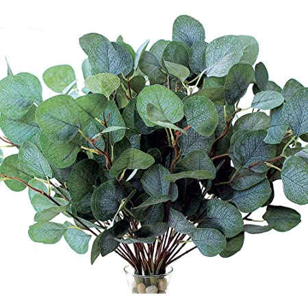Amazon Com Artificial Greenery Stems Faux Silk Eucalyptus Leaves White Seeded Green Grey Blue Floral 6 Picks 5 Branches Each Floral Pick For Flower Arrangement Crafts Holiday Centerpiece Décor Kitchen Dining