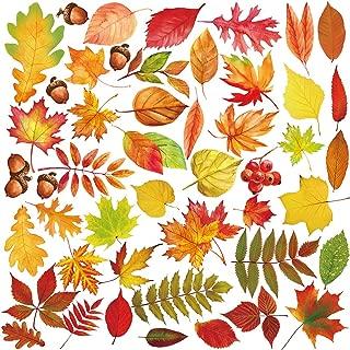 maple leaf windows
