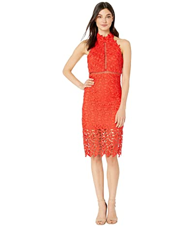 Bardot Gemma Halter Dress (Poppy Red) Women