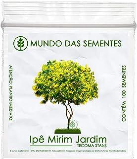 100 Sementes de Ipê Mirim de Jardim (Árvore) - Tecoma stans