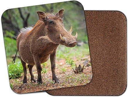 Moose Fox Boar Woodland Woods Drawing Gift #12536 Rustic Wild Animal Coaster