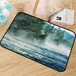 hengshu Yellowstone Universal Door mat Fog on Yellowstone River Alpine Trees by The Bank Wilderness Waterscape Picture Door mat Floor Decoration W35.4 x L47.2 Inch Green Blue