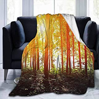 dsdsgog Flannel Throws Blankets Durable Bed Couch Nature,Foggy Forest Scenery with Sunrays Reflecting on Trees Mystic Woodland Image,Orange Fern Green,60