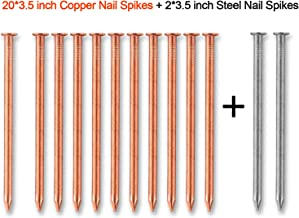 3.5 Inch Copper Nails for Killing Trees, 20 Pieces 3.5 Inch Solid Copper Nail Spikes with 2 Pieces 3.5 Inch Large Steel Nail Spikes for Killing Tree, Removing Stumps & Roots