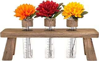 Excello Global Products Unique Rustic Flower Holder: Includes 3 Test Tubes Glass Vases. Use as a Desktop Terrarium Planter with Wood Stand.