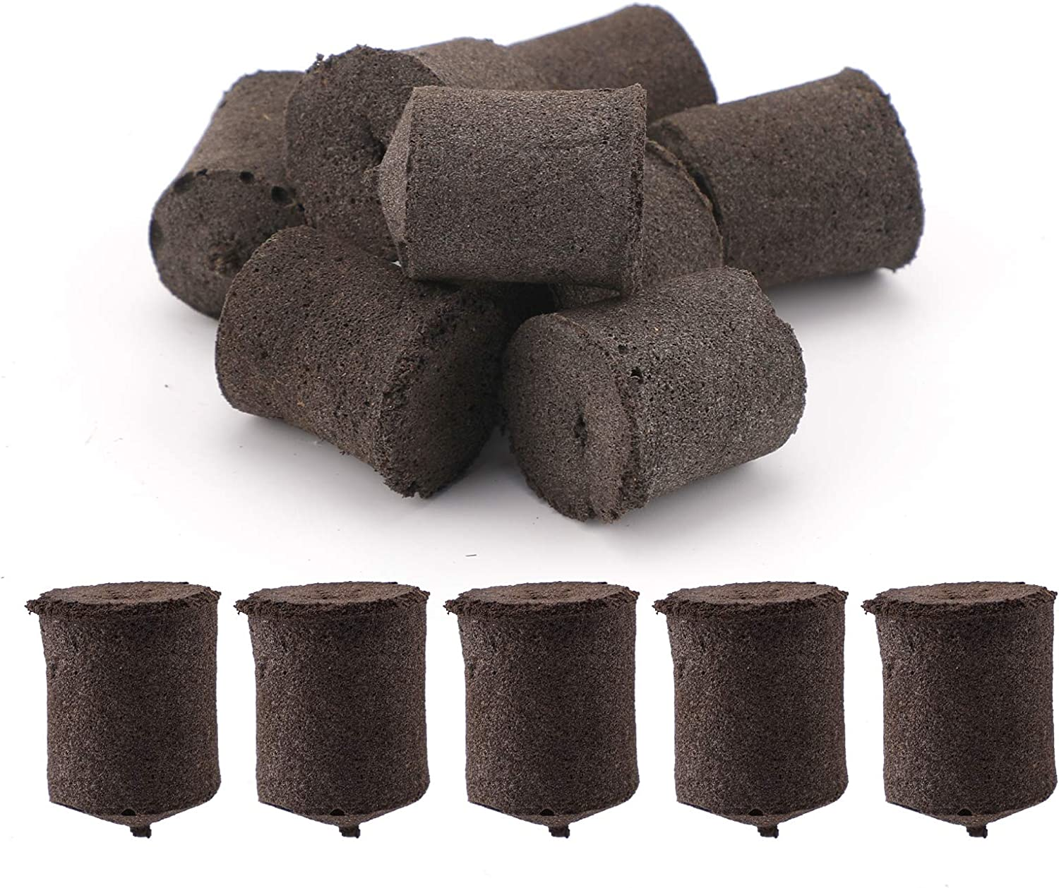 LUTER 50Pcs sold out Grow Sponges Seed Starter Growth Root Sponge Plugs Max 77% OFF P