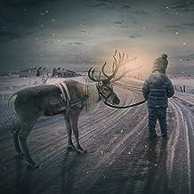 Lapland Morning