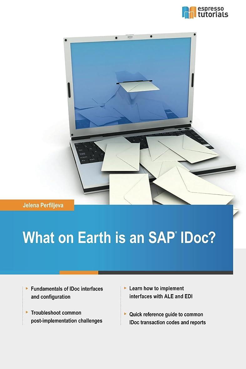 チャペル原因近傍What on Earth is an SAP IDoc? (English Edition)