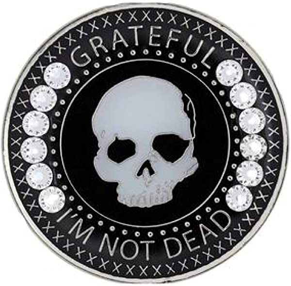 Grateful I M Not Dead Medallion AA Alcoholics Anonymous NA Recovery Chip