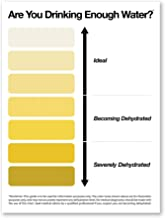 Passion Fury Urine Pee Color Chart Framed, Poster or Canvas