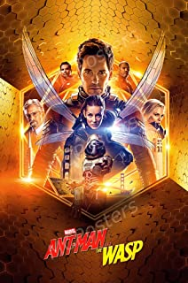 Ant-Man and The Wasp 2018 Premium Poster Paper LARGE 24X36 MOVIE POSTER