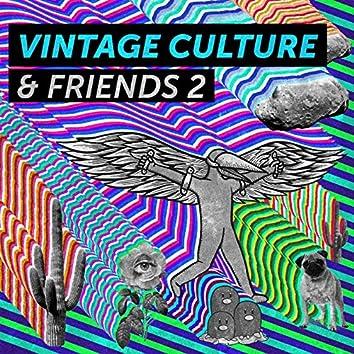 Vintage Culture & Friends 2 - EP