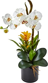 Nearly Natural Orchid and Bromeliad Silk Arrangement, Cream