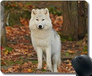 Yanteng Gaming Mouse Pad Custom, Stare Wildlife Wolf - Alfombrilla de ratón Antideslizante para Juegos