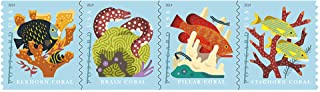 $41 » Coral Reefs Postcard Coil of 100 First Class Forever Postcard Postage Stamps Sea (100 Stamps)
