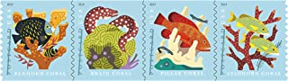 Best postage stamp size for postcard Reviews